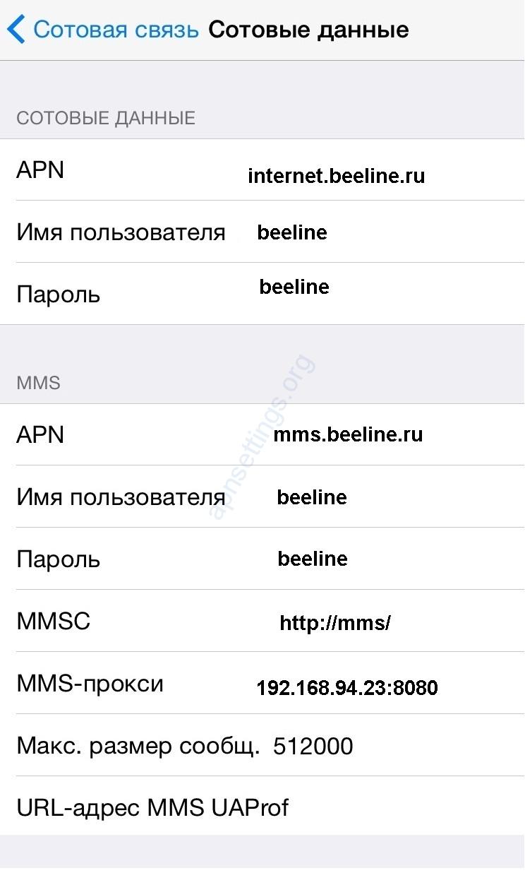 Настройка интернета билайн на iPhone