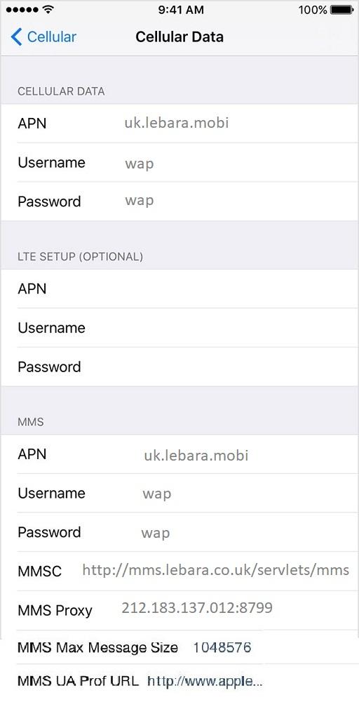 Lebara APN Settings for iPhone