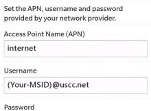 US Cellular Blackberry APN Settings